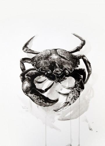 Les-details,-Crabe-vert-racaille---acrylic-on-paper---36-x-26-cm---2008