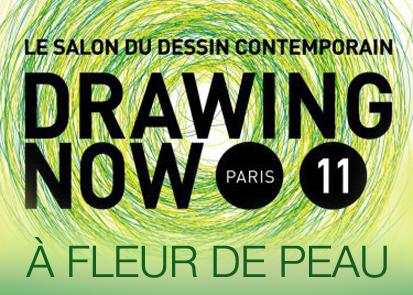 NEWS 2017 - Drawing Now à fleur de peau